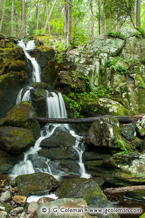 Prydden Brook Falls • Newtown, CT